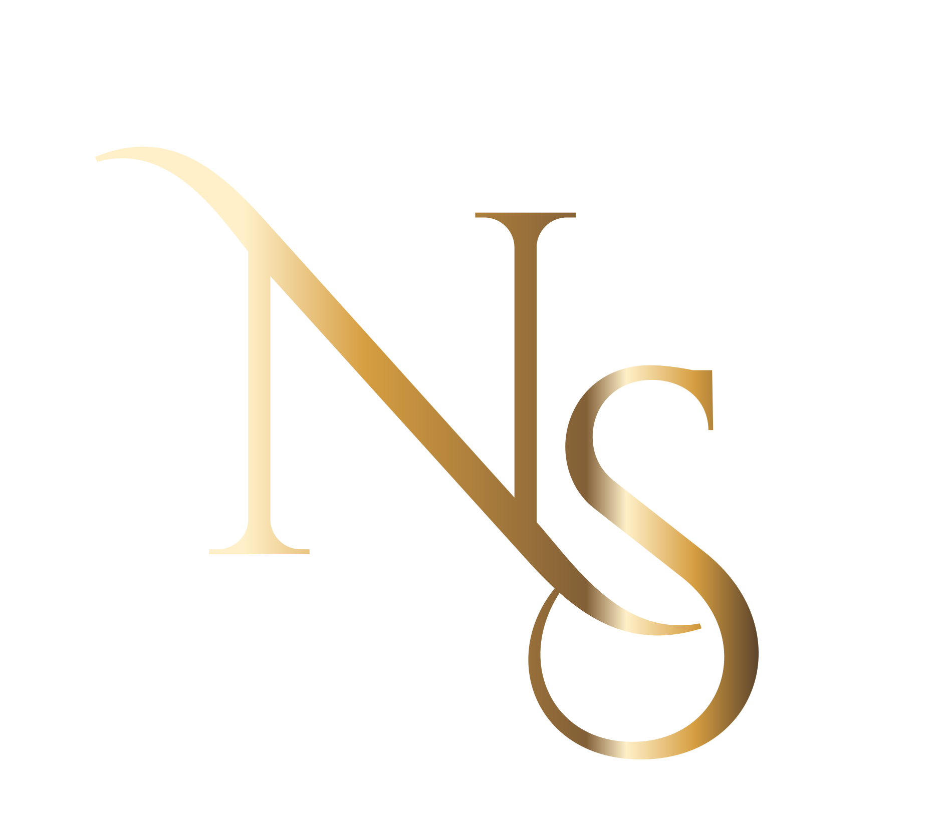 ns-logo-1